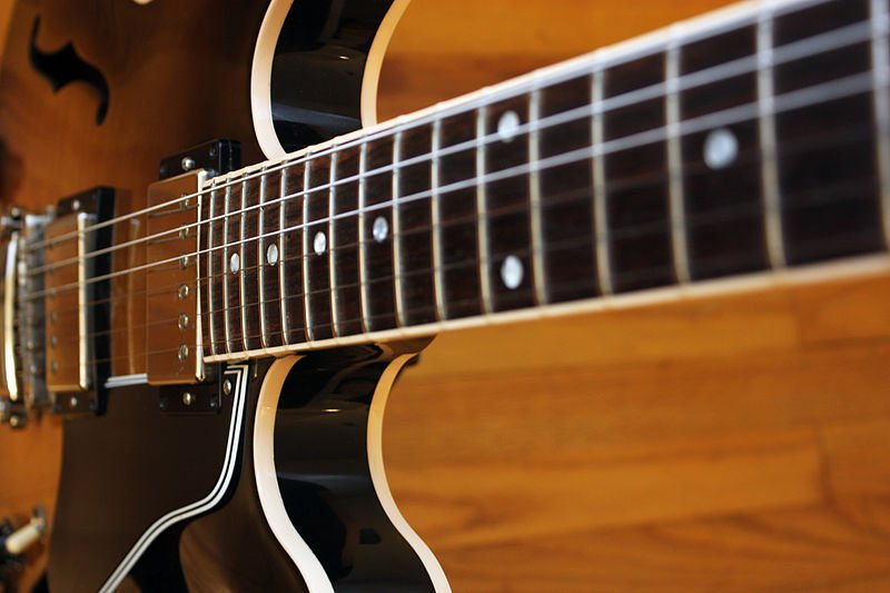 2005_Gibson_ES-335_-_fretboard_from_middle_2010-03-17_00.20.38_by_John_Tuggle.jpg