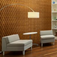 Bamboo in a Sustainable Design Environment CEU Presentation